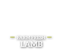 View Lamb Products
